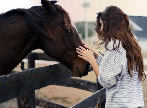 FUNNY: De horoscoop van jouw paard
