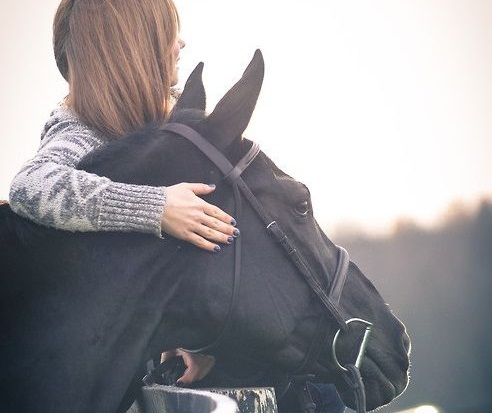 8 REDENEN: waarom je paard beter is dan een (ex-)vriend