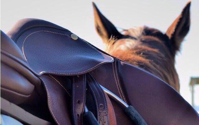 HOTSPOT: Zou jij hier op vakantie gaan met je paard?