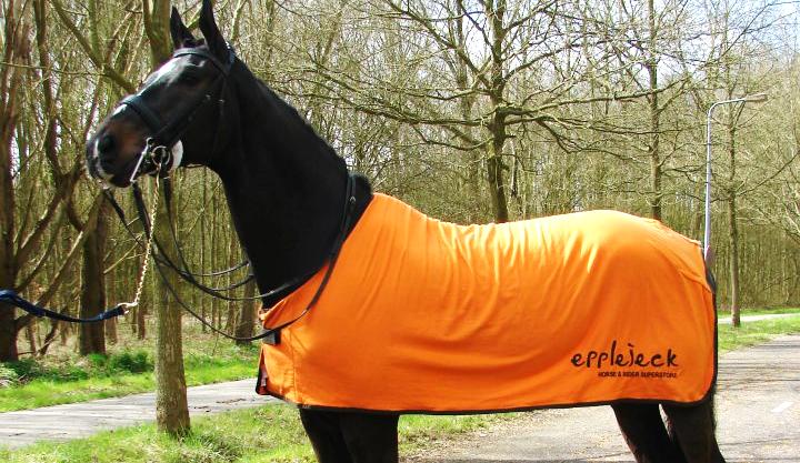 MUST READ: Gastblogger voor Epplejeck + WINACTIE!