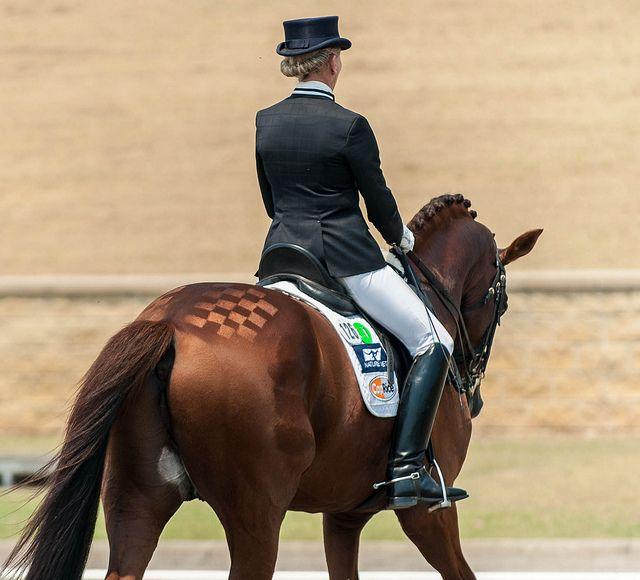 INSPIRATIE: 9x leuke scheerpatronen voor je paard