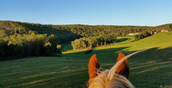 VAKANTIETIP: Prachtige trektochten in Frankrijk