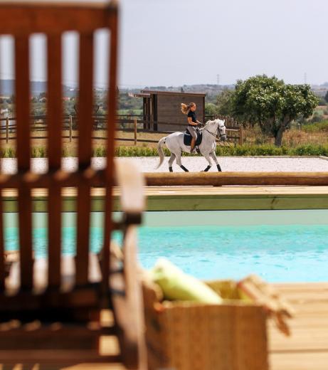 VAKANTIE HOTSPOT: De ultieme bestemming voor paardenliefhebbers