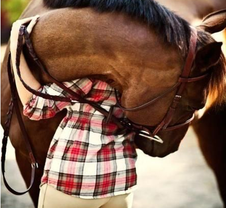 HORSE GIRL PROBLEMS: 6 herkenbare momenten voor paardenliefhebbers