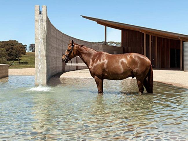 STABLE STYLE: Minimalistische stal met zwembad voor paarden