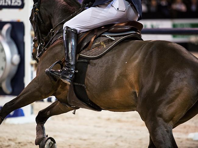 PHOTO REPORT: Achter de schermen bij Jumping Indoor Maastricht