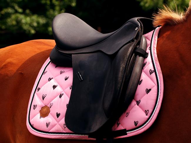 SHOPPEN: 10 leuke Sint cadeautjes voor kleine paardenmeisjes