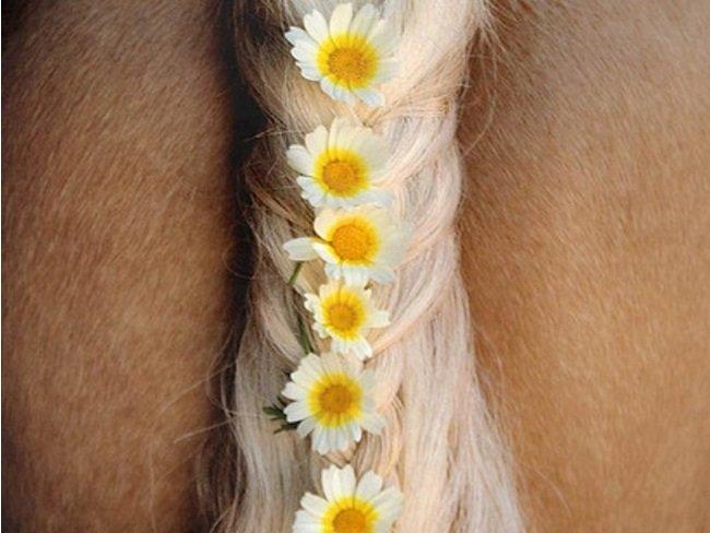MUST READ: Dit middel kan de oplossing zijn voor zomerexceem