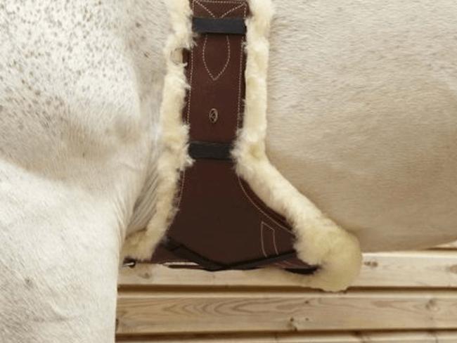 MUST READ: 7 feiten over singels waarvan je paard wilt dat je ze kent