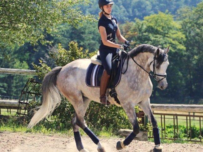 MUST READ: Waarom je nooit intensief mag paardrijden met een kater