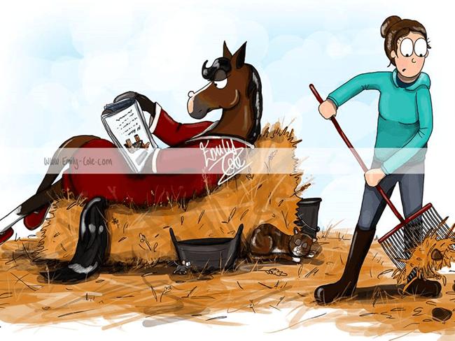 MUST SEE: Deze hilarische illustraties over ruiters en hun paard
