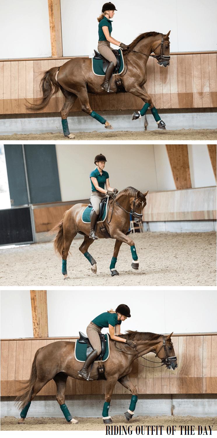 Paard setje groen