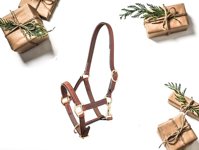 ALL I WANT FOR CHRISTMAS GIVEAWAY #4: Chique halster (in zwart of bruin) van Premiera