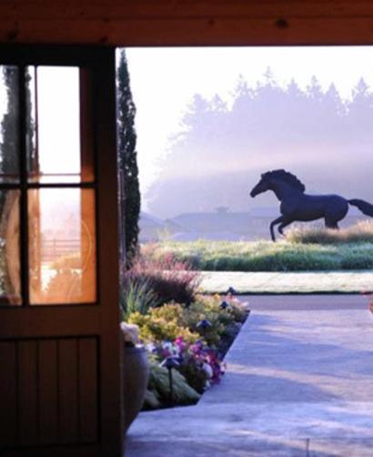 paarden aan huis tips geld besparen