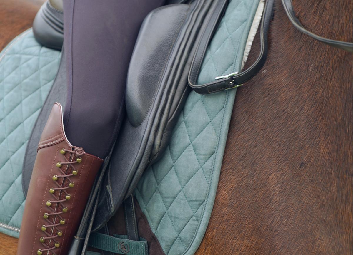 groen setje paard